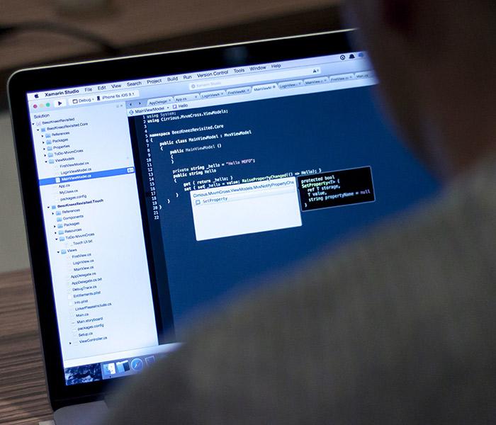 Software sob medida
